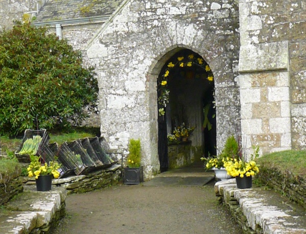 St Mawgan in Meneage  Church Daffodil Festival.